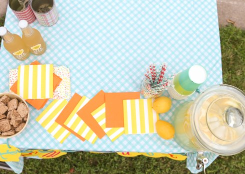 Lemonade Stand (1 of 1)-39